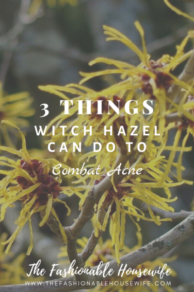 3 Things Witch Hazel Can Do To Combat Acne