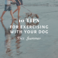 10 Tips for Exercising with Your Dog