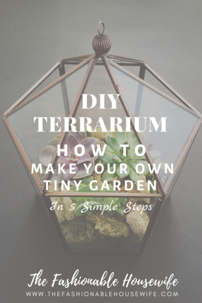 DIY Terrarium: How To Make Your Own Tiny Garden