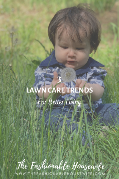 3 Lawn Care Trends For Better Living