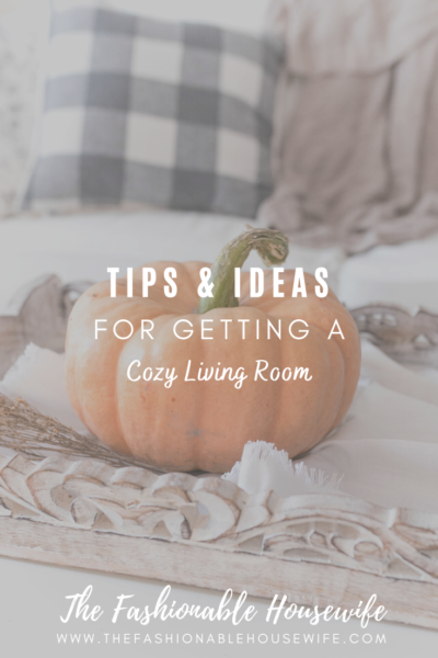 Cozy Living Room Tips And Ideas