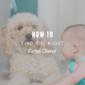 How To Find the Right Carpet Cleaner