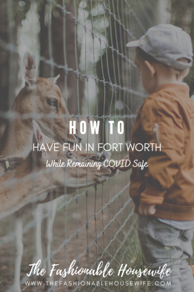How To Have Fun In Fort Worth While Remaining COVID Safe