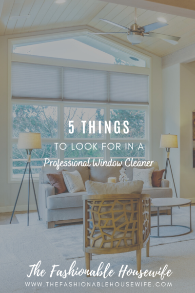 5 Things To Look For In a Professional Window Cleaner