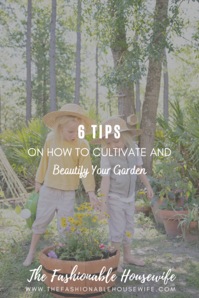 6 Effective Tips on how to Cultivate and Beautify Your Garden