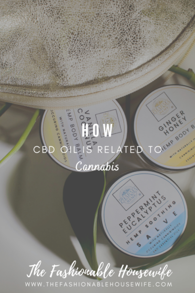 How CBD Oil Is Related To Cannabis