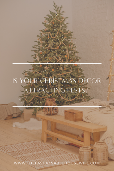 Is Your Christmas Decor Attracting Pests?