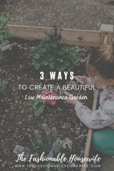 3 Ways To Create a Beautiful Low Maintenance Garden