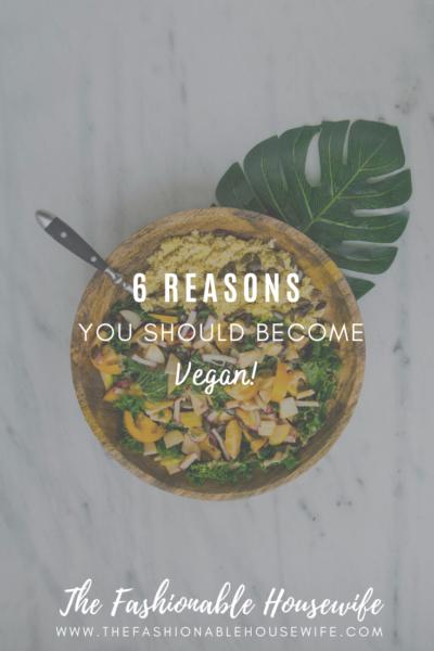 6 Reasons You Should Become Vegan