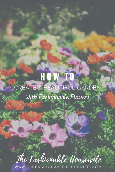 How To Create A Beautiful Garden With Fashionable Flowers
