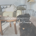 7 Shocking Benefits of Professional Carpet Cleaning