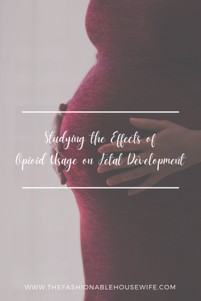 Studying the Effects of Opioid Usage on Fetal Development
