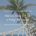 What Does Luxury Look Like in Montego Bay, Jamaica?
