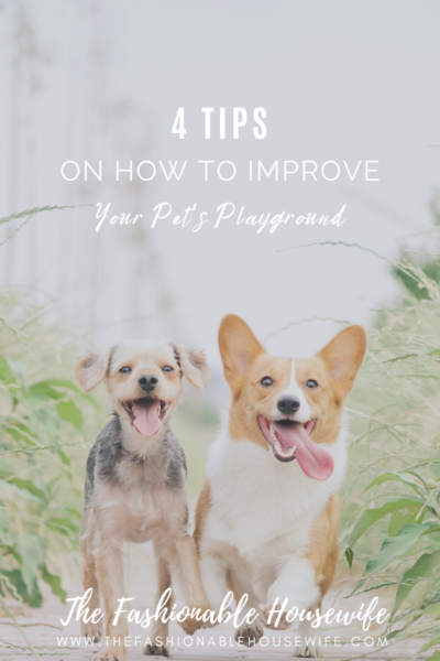 4 Proven Tips On How To Improve Your Pet's Playground