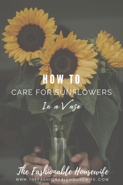 How To Care For Sunflowers in a Vase