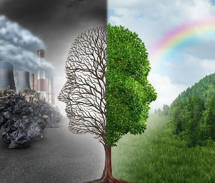 Top Environmental Factors That Affect Your Health