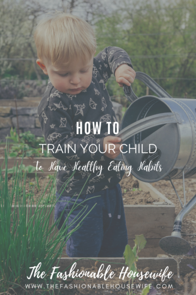 How to Train Your Child to Have Healthy Eating Habits