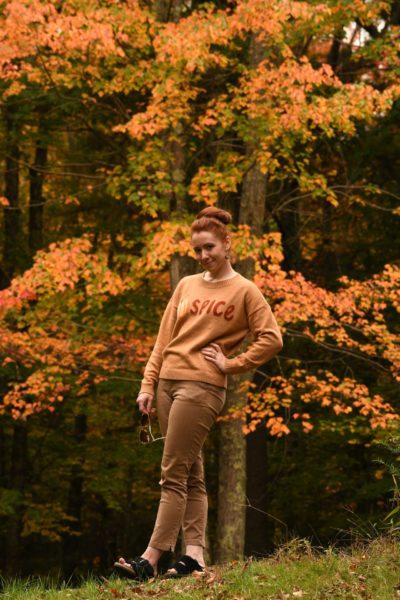LOFT Pumpkin Spice Sweater